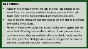 Practice Recommendations for Preventing Heel <b>Pressure</b> Ulcers ...