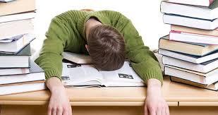 buying essays online plagiarism Shape Sustainability