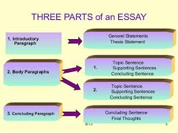 Parts of an Argument Essay   YouTube Pinterest