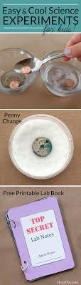 must see chemistry projects pins density experiment penny change chemistry cool science experiments for kids