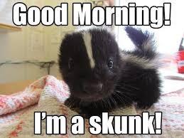 GOOD MORNING MEME FOR BOYFRIEND - Good Morning & Good Night via Relatably.com