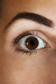 The 9 Best Foods for Eye Health   <b>Natural Vision Enhancers</b>  