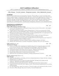 ceo resumes cfo resume sample cfo2 cfo resume sample sample cfo personnel executive assistant resume examples executive assistant