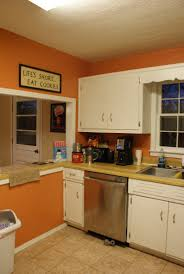 paint kitchen cabinets dsc x kitchen sony dsc good looking kitchen cabinet ideas brown