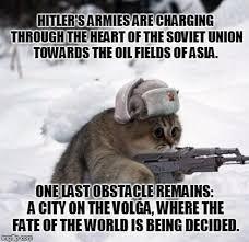 Cute Sad Soviet War Kitten Meme Generator - Imgflip via Relatably.com