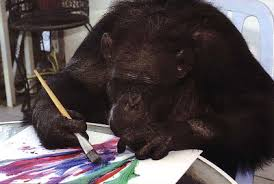 Risultati immagini per immagini scimpanze con piccolo fiori
