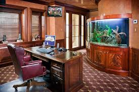 1000 images about fish tanks in the office on pinterest aquarium fish tanks and saltwater fish tanks aquarium office 1000 images