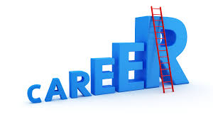value of project professional certifications e g pmp pgmp pfmp mba