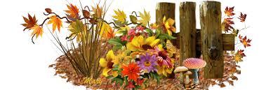 """Résultat de recherche d'images pour """"fleurs d'automne"""""""