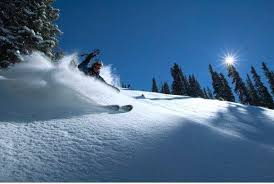 Simple Camels Garden Hotel Reservations Manager Mike Munno Shredding Telluride Powder For Inspiration Decorating