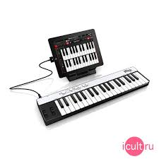 <b>MIDI</b>-<b>контроллер IK Multimedia iRig</b> Keys Compact Black черный ...