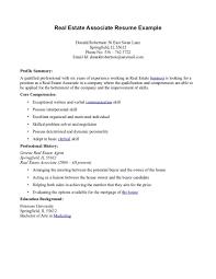 resume profile statement examples volumetrics co resume profile real estate agent resume associate and profile summary plus core resume profile statements examples resume objective