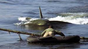 Image result for jaws 2