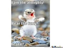 Fear The Fuzzy! by littled11966 - Meme Center via Relatably.com