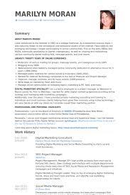 digital marketing consultant cv rnei junior travel consultant resume