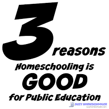 homeschooling is good for public education suzy homeschooler the worst argument against homeschooling