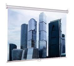 Купить <b>Экран LUMIEN Eco</b> Picture LEP-100103 в интернет ...