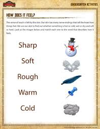 How Does It Feel? - Kindergarten Science Worksheet - School of DragonsPrintable Kindergarten Science Worksheet