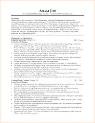 project management cv skills manager example template sample project management cv skills project manager cv example cv template sample