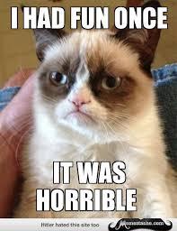 17 Totally Amazing Grumpy Cat Memes - Page 1 - Memestache via Relatably.com