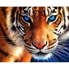 "Full Square/<b>Round</b> Drill 5D DIY Diamond Painting ""Aniaml <b>tiger</b>"" <b>3D</b> ..."