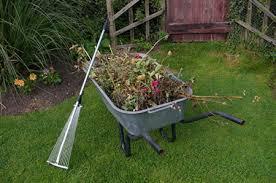"""Résultat de recherche d'images pour """"image jardinage"""""""