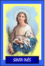 Image result for santa inês