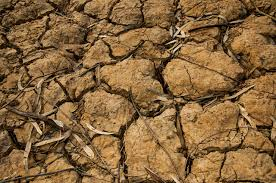 desertification land degradation under a changing climate climatica