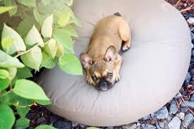 <b>Cushion</b> Cover <b>Set 2 pcs</b>: LUNA LOUNGE & Deco-<b>Pillow</b>