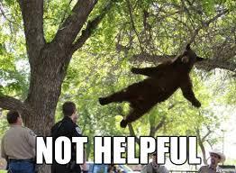 Falling Bear - WeKnowMemes Generator via Relatably.com