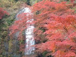 大阪-箕面溫泉庭園