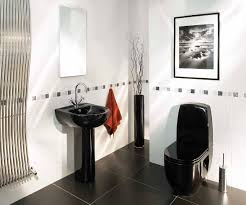bathroom decor ideas toilet