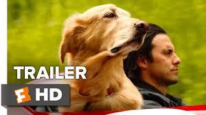 The Art of <b>Racing</b> in the Rain Trailer #1 (<b>2019</b>) | Movieclips Trailers ...