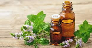 Benefits of <b>Peppermint Oil</b>: Uses, Side Effects & Research