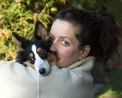 fundacja na rzecz zwierząt, adopcje psów, adopcje kotów. Czy warto adoptować bezdomnego psa? Zdecydowanie warto. Oprócz wielu zalet adopcji psa ze ... - adopcje_1