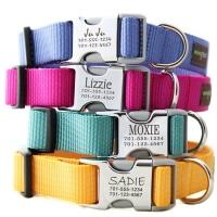 Custom, <b>Personalized Dog Collars</b>: Engraved Options & Styles
