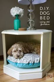 1000 images about diy pet projects on pinterest diy dog pet beds and diy dog toys cat lovers 27 diy solutions