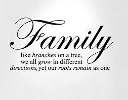 best-family-quotes-ove.jpg via Relatably.com