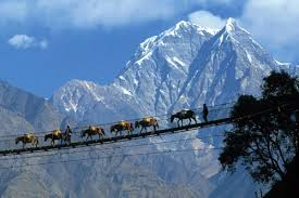 Image result for pelling in gangtok