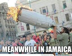 Weed Memes on Pinterest | Marijuana Funny, Smoking Weed and Weed Humor via Relatably.com