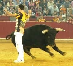 Resultado de imagem para quiebros a toros