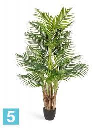 Искусственная пальма Арека Бетель 5 стволов 130h