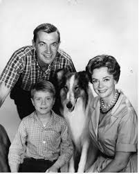 Image result for images of lassie tv show