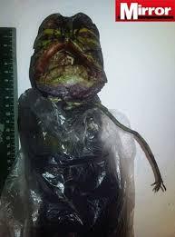 Resultado de imagem para Russa guardou um alienígena na geladeira por dois anos...fotos