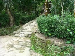 Image result for núi rừng tiên phước