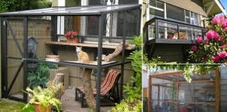 catio spaces keep your cat safe and happy cat safe furniture