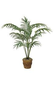 8 foot <b>Artificial Phoenix Palm Tree</b> Plant in Pot & Christmas Lights ...