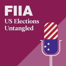 US Elections Untangled