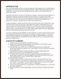 executive summary template example xianning executive summary template example executive summary format example resume writing service from a 2 california