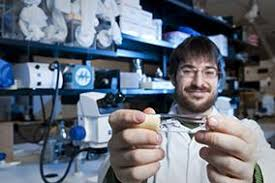 Microbiology and Immunology   Graduate and Postdoctoral Studies     uOttawa